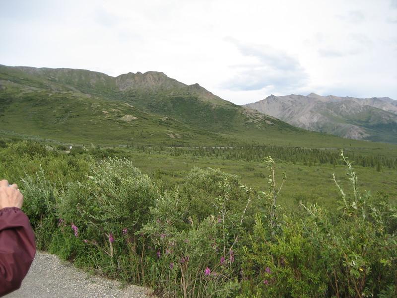 Alaska 09 080.jpg