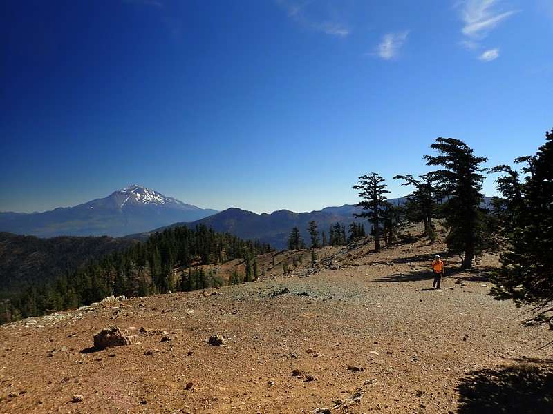China Mountain Shasta-Trinity National Forest California
