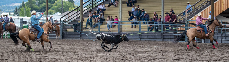 2019 Rodeo B (186 of 1309).jpg