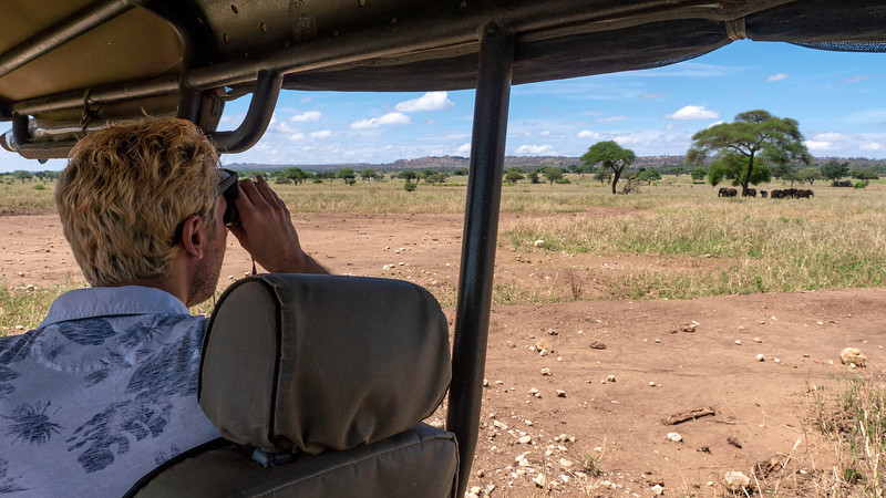Tanzania-Tarangire-National-Park-Safari-Elephant-20.jpg