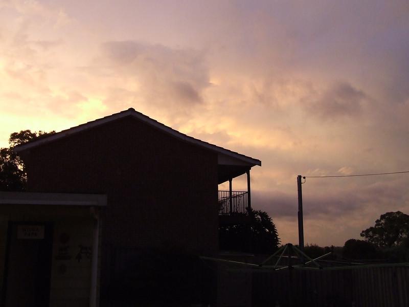 My backyard at sunset.
