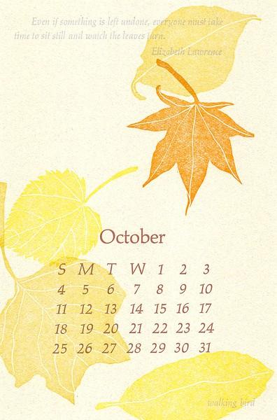 October, 2009, walking bird