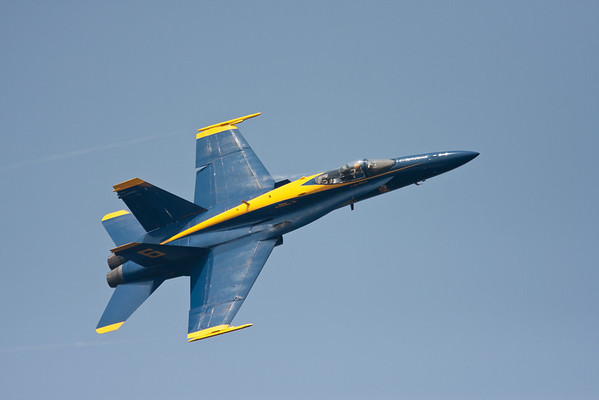 Blue Angels '10