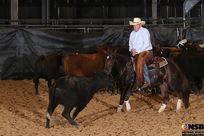 Sunday 25k Novice Horse Non Pro