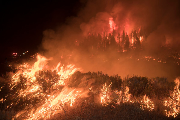 Roosevelt Fire