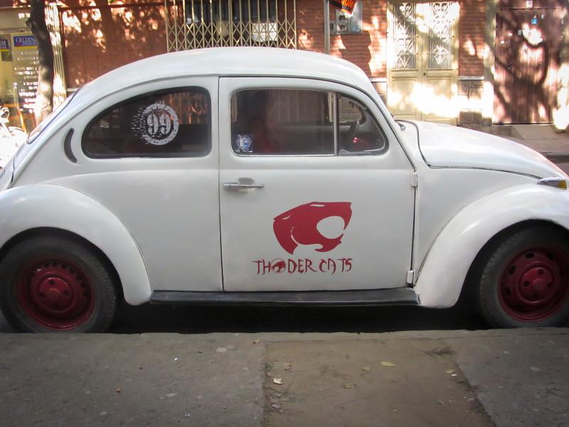 Tarija 201205 Bug 01.jpg