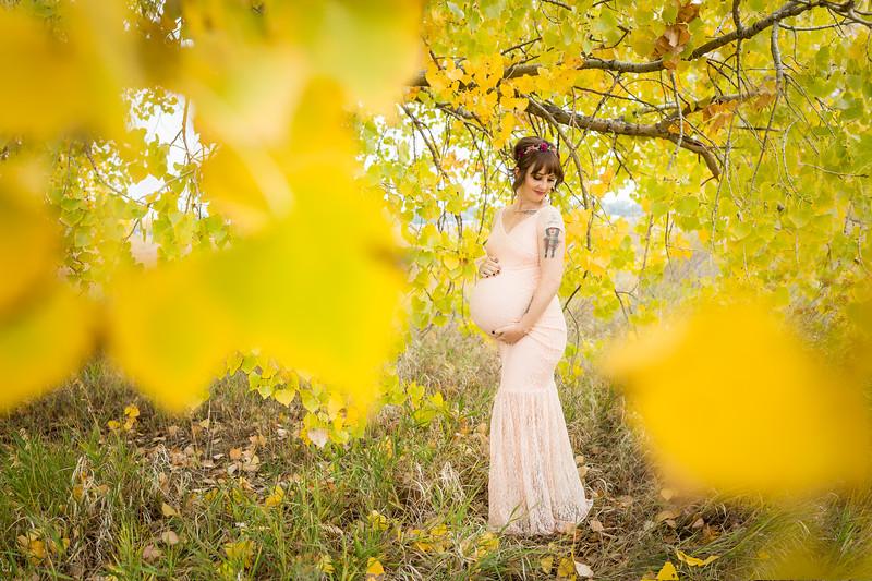 Reisbeck Maternity