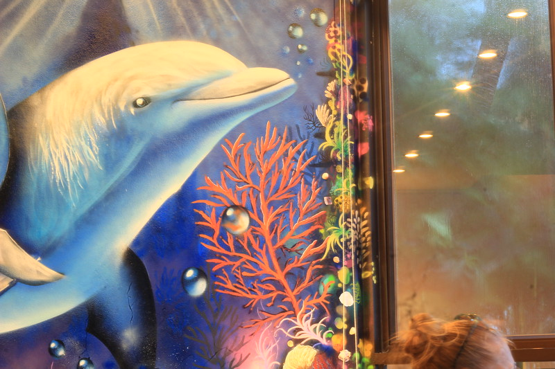 IMG_2417 villa dolphin.JPG