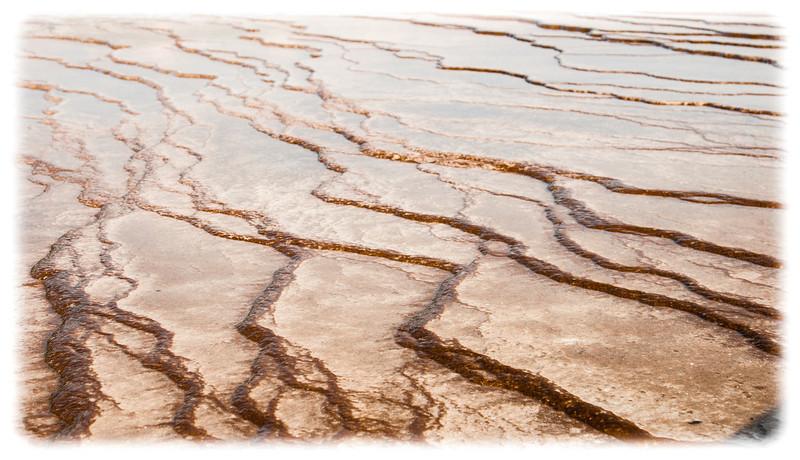 Yellowstone-8673.jpg