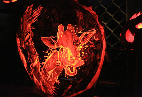Jack-o-Lantern Spectacular at Roger Williams Zoo 2013