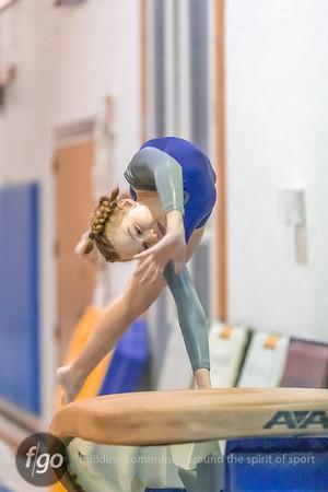 1-8-20 Minneapolis Gymnastics Meet