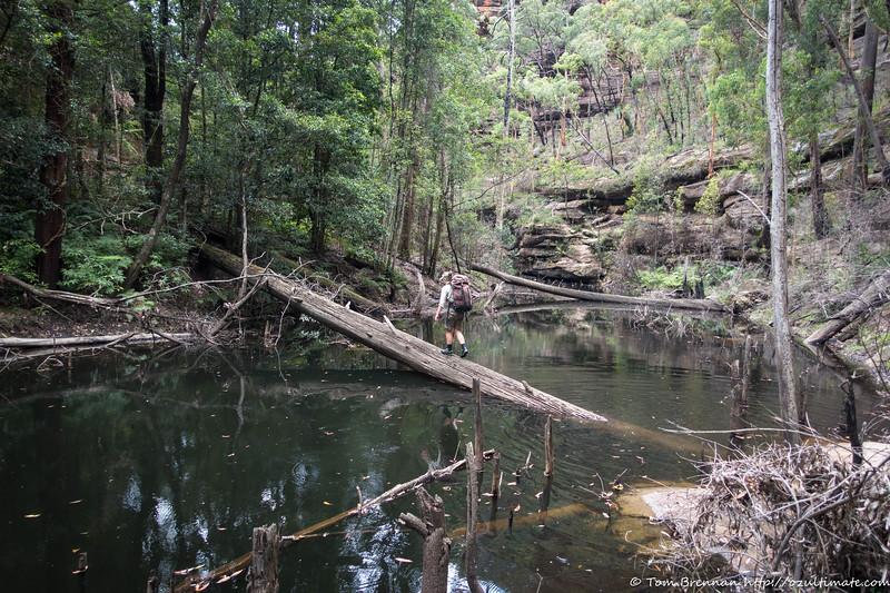 A rockfall had blocked Nayook Creek forming a deep pool