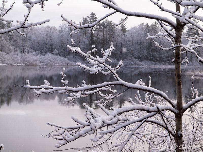 First Snow-7.jpg