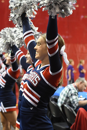 Cheer at State Volleyball Tournament