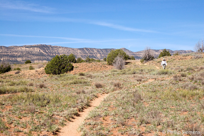 Beginning of trail to Zebra Canyon