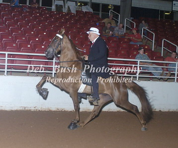 CLASS 75--   4 YR OLD STAKE  A/D
