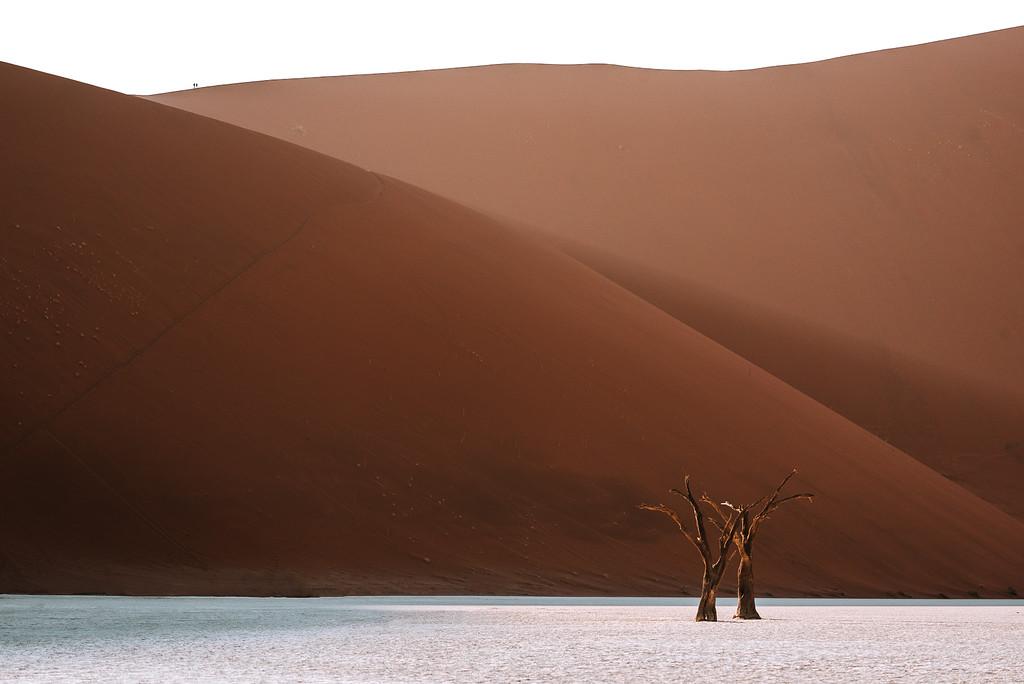 Sossusvlei 死亡谷與箭袋樹森林介紹與旅行建議 by 旅行攝影師張威廉 Wilhelm Chang