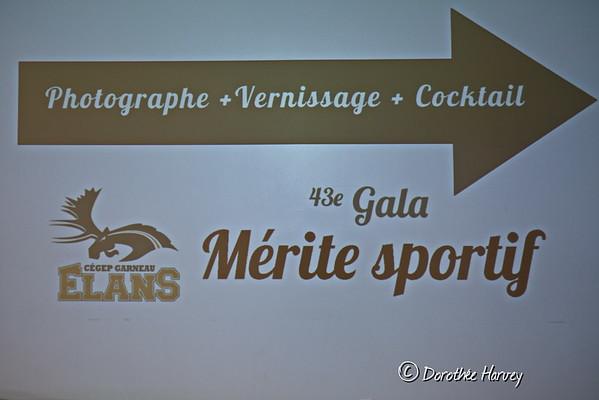 Gala 43e mérite sportif des Élans de Garneau