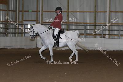 Class #139 HA/AA Sport Horse Show Hack Open