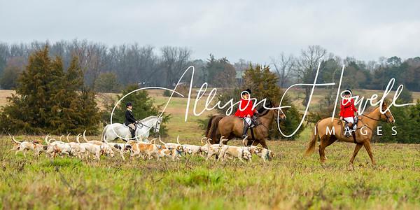 Belle Meade Hunt Ball hunt 2019