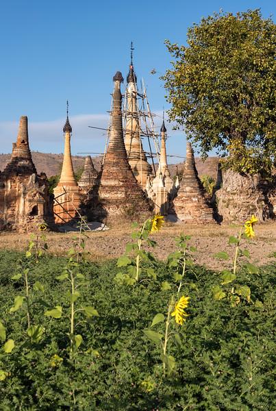 Temples of Sankar