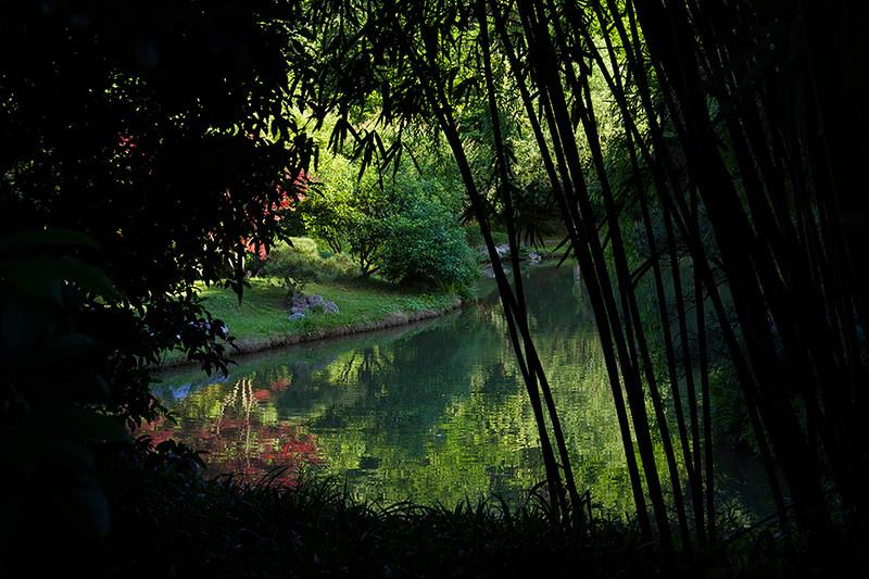 Longjing Manor Tea Garden, Hangzhou, China