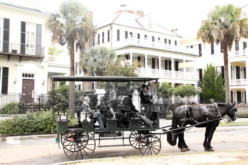 Charleston Tours horse carriage.jpg