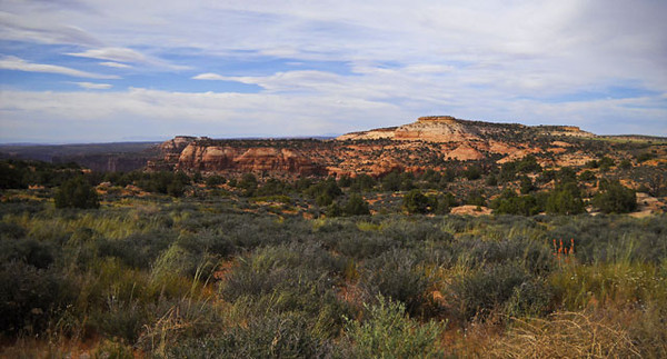 Canyonlands-Park-pano-copy.jpg