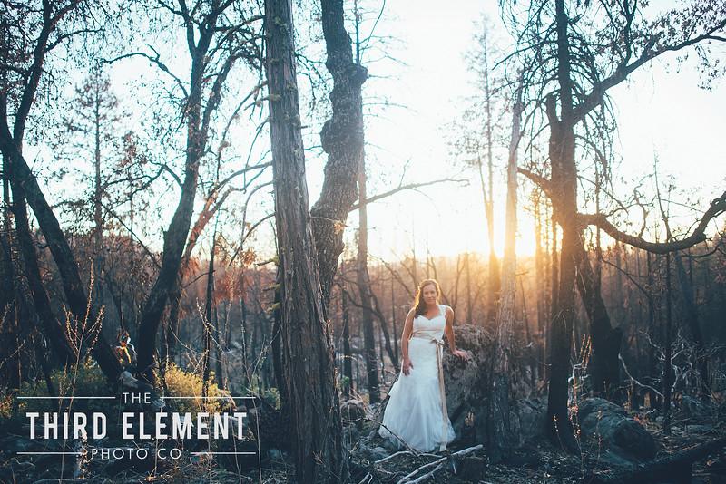 Third Element Photo Co Brittney + Errol Yosemite Wedding Hetch Hetchy San Francisco_0023.jpg