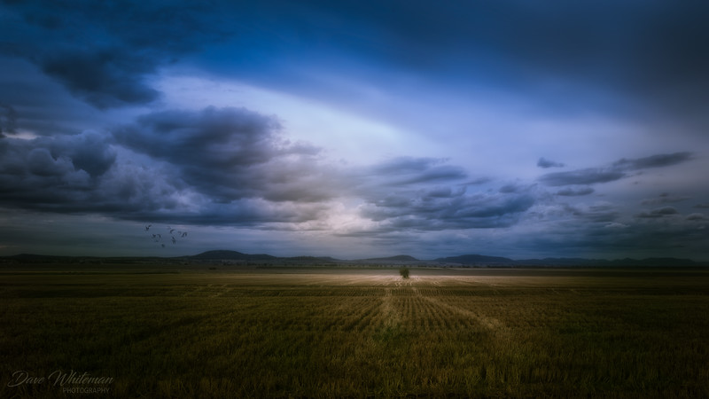 Storms on the Breeza Plains