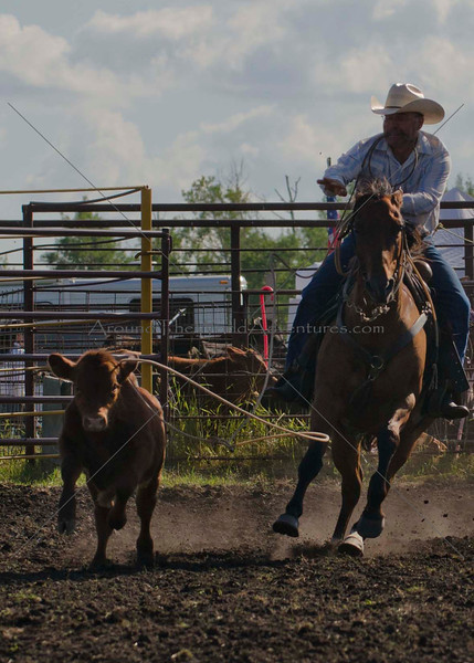 Roping Friday 2012