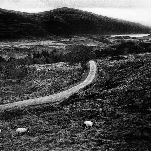 Schots landschap 1.jpg