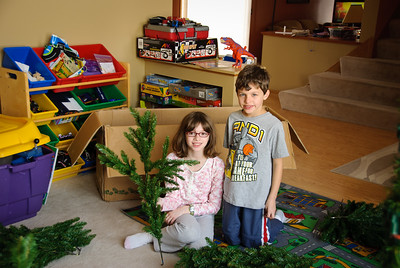 2010 Nov - Xmas Tree
