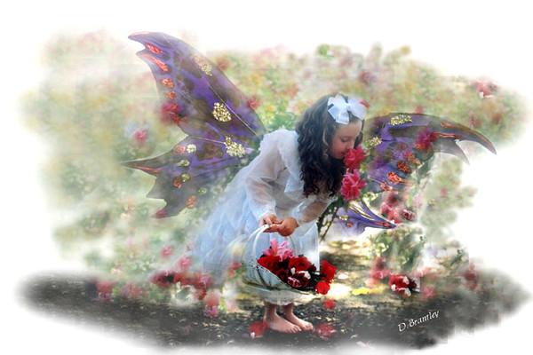 fairy kid 999.jpg