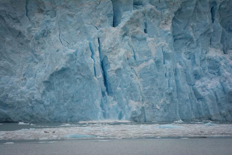 Kenai-Fjords-85.jpg