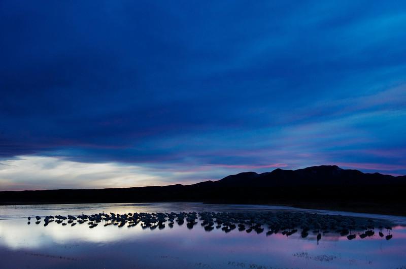 Crane Pond After Sunset