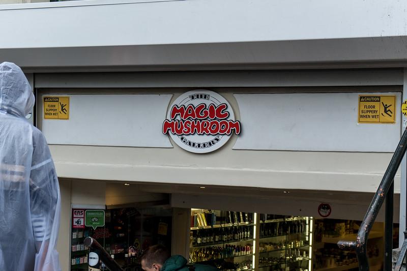 A Magic Mushroom Store