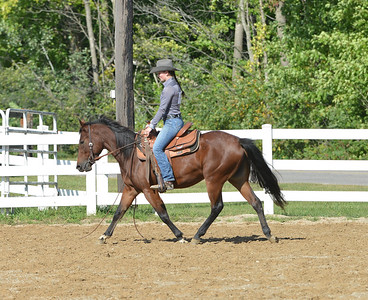 Events 6  and  7  -  W/T  Ranch Horse