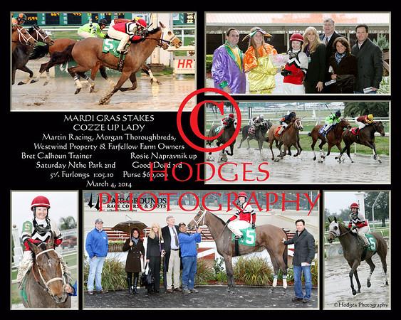 Mardi Gras Stakes 3/4/2014
