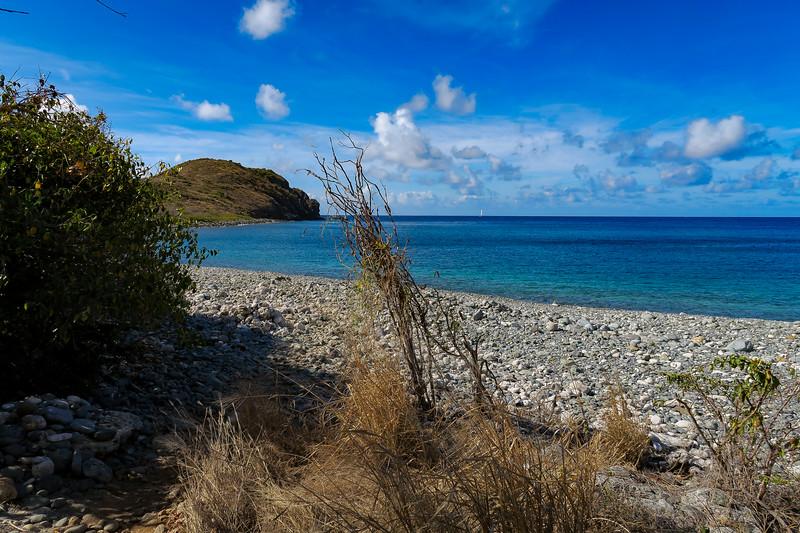 Ram Head Trail (Blue Cobblestone Beach) -- 5'