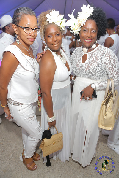 Maxine Greaves Pure White Derby Garden Soiree 2016-384.jpg