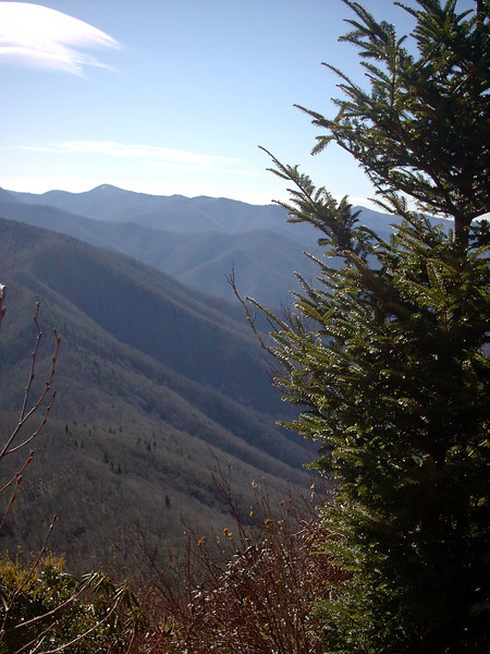 Cold Mountain Trail - 6,010'