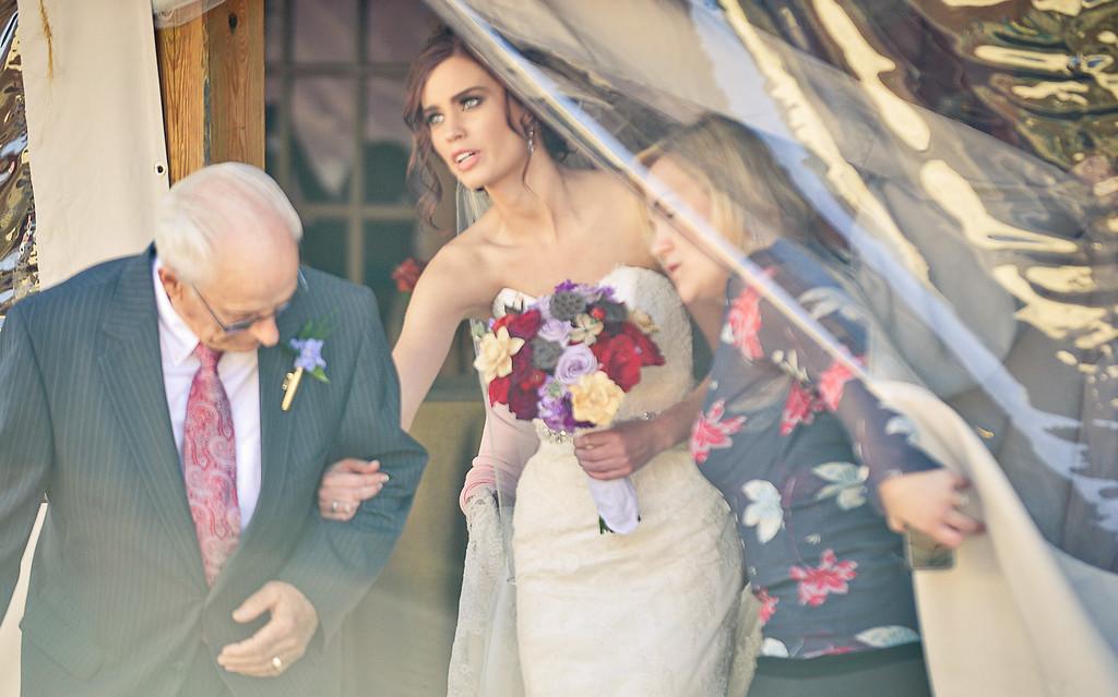 . Paige Collins is led to her wedding. (Pioneer Press: Ben Garvin)