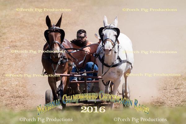 Saturday Big Mules  2016 National Championship Chuckwagon Races