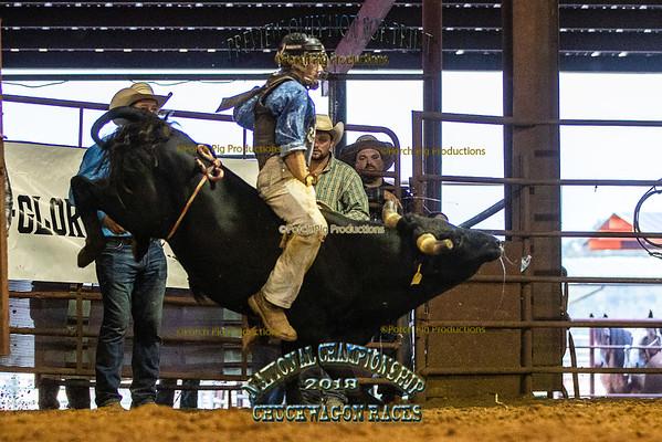 Mini Bull and Bronc Riding