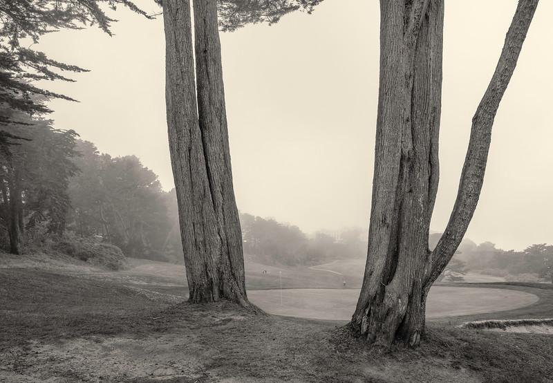 Golfing in the Fog