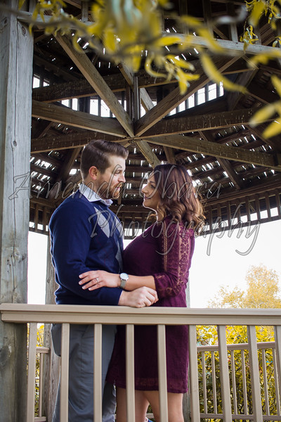 Engagement Photos-17.JPG