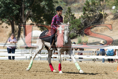 Rider 28