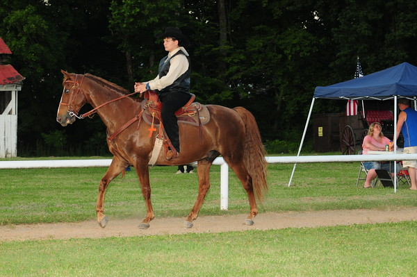 14 - Juvenile Gaited Pleasure