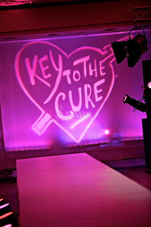 Key to the Cure 2012